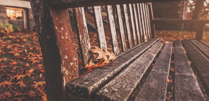 wood-bench-park-autumn.jpg